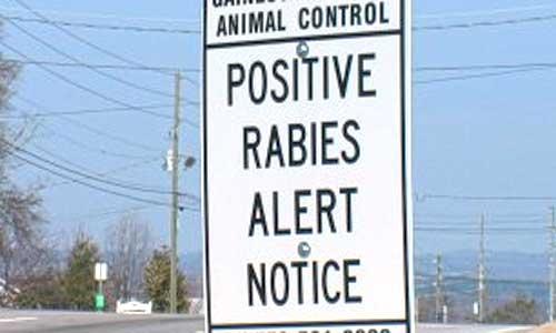 rabies-alert-sign